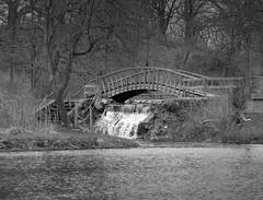 IMG_9686 (Mat_B) Tags: fel pro rrr nature preserve forest walk spring 2017 photography black white bridge water waterfall river lake