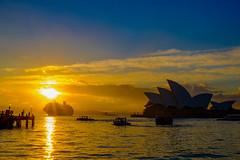 untitled-1443 (jasper.samonte) Tags: fujifilm xt20 xf1855 sunrise operahouse sydney sydneyharbour tourist cruiseship boat ferry landscapes silhouette