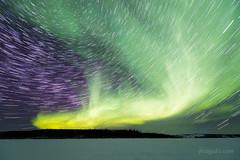 Aurora + star trails (josefrancisco.salgado) Tags: 1424mmf28g canada d5 nikkor nikon northernlights northwestterritories prosperouslake yellowknife astrofotografía astronomy astronomía astrophotography aurora auroraborealis aurorae auroras cielonocturno estrellas exposiciónlarga frozenlake iceroad lago lagocongelado lake longexposure multipleexposure night nightsky startrails stars trazasdeestrellas