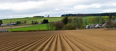 Kirkton of Monikie 20 April 2017-0005.jpg (JamesPDeans.co.uk) Tags: view spring landscape season gb greatbritain furrow prints for sale panorama agriculture unitedkingdom scotland digital downloads licence man who has everything britain field vanishingpoint wwwjamespdeanscouk plough angus farm landscapeforwalls europe uk james p deans photography digitaldownloadsforlicence jamespdeansphotography printsforsale forthemanwhohaseverything