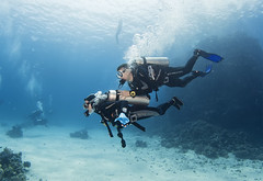1204 12a (KnyazevDA) Tags: disabled diver disability diving owd underwater undersea padi redsea buddy handicapped paraplegia paraplegic