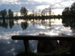 Bench in the twilight HBM (frenziM) Tags: bench landscape nature twilight germany water hbm