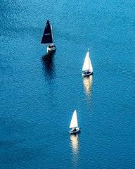 Sailboats On The Charles ((Jessica)) Tags: boston esplanade massachusetts newengland spring
