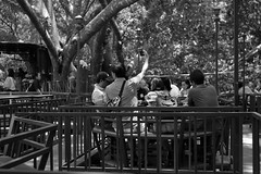 DSCF4301 (SLADE_6) Tags: monochrome 35 summicron snapshot photography v3 black white
