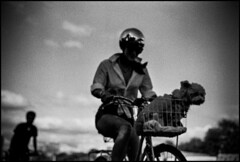 Cyclists & Dog, 2017 (Khunya Lamat Pan) Tags: leica m6 rangefinder summicron 50mm f2 35mm 35mmphotography filmphotography film grain kodak trix 400iso depth field monochrome dof black white vignetting bokeh street photography shadows surreal