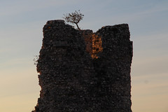 tower with a tree ✿ (cyberjani) Tags: starigrad paklenica velebit