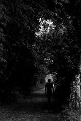 Walking Dead (tebanvera) Tags: trees white black mountains nature self walking dr lakes mothernature jarabacoa bamboos