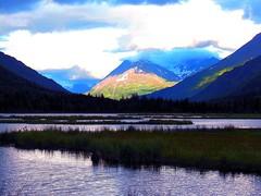 Alaska 3 (MarculescuEugenIancuD5200Alaska) Tags: alaska greenscene allxpressus fleursetpaysages outstandingromanianphotographers