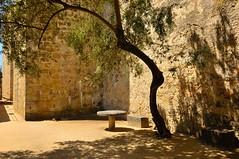 Lisbon : In the Castle of So Jorge  1/7 (Pantchoa) Tags: castle portugal nikon lisboa lisbon inside nikkor sojorge d90 pantxoa pantchoa 1685f3556gedvr franoisdenodrest