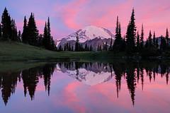 Mount Rainier Sunrise Reflection (jeremyjonkman) Tags: park pink sky mountain lake reflection nature clouds sunrise canon photography eos mark pass jeremy mount national ii rainier 5d chinook jonkman tipsoo