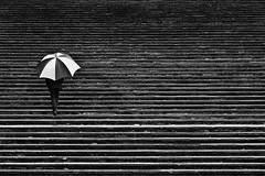 Street 21 (Robert Wesley) Tags: street blackandwhite man rain umbrella nikon steps d200 18135mm