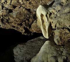 _DSC1137 (JohannesLundberg) Tags: underground se sweden flash limestone cave geology gotland speleothem sb800 caver silurian cavephotography speleologist touristcave lummelundagrottan lummelundacave sb910 yongnuorf603n