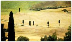 Val d'Orcia, de Pienza, Toscane (claude lina) Tags: tuscany pienza toscane italie bagnovignoni sanquiricodorcia creativemindsphotography valdorica
