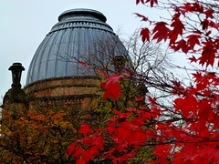 Autumn Oakshaw  Nelson Dome & red Leaves (dddoc1965) Tags: autumn tree scotland photographer paisley oakshaw davidcameron paisleypattern dddoc paisleytown paisleyhighstreet positivepaisley pa12pu