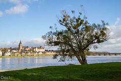 La Loire  Gien (Oric1) Tags: bridge france automne river rivire pont loire arbre fleuve loiret gien img6938jpg oric1