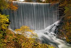 H a n g O n T o Y o u r s e l f (AnthonyGinmanPhotography) Tags: longexposure autumn japan waterfall autumncolours ueda naganoprefecture leefilters olympuse620 olympus1122mmf28