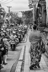 Reportaje Bali (Sergio Bjar) Tags: bali white black blanco rice negro ubud arroz tanalot klungkun