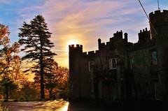 Balloch Castle (2) (Missy Jussy) Tags: trees sunset castle architecture canon landscape scotland historical balloch ballochcasleandcountrypark