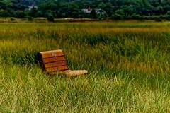 In Splendid Isolation (Timothy Valentine) Tags: bench capecod large monday 0813 wellfleetma massachusettsaudubon