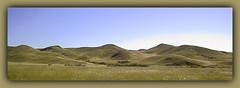 The Bald Hills of Saskatchewan Landing Provincial Park (robinb44) Tags: canada buffalo hills nativeamerican firstnations indians prairie saskatchewan plains southsaskatchewanriver bison steamboats ferrycrossing provincialparks