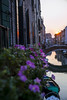IMG_3712 (SamSeguso) Tags: bridge flowers venice sunset italy house reflection home colors canal reflex sweet violet dreams venise thisismyhome sunsetinvenice
