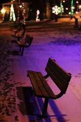 Christmas in the Park (EmmaRoganPhotography) Tags: christmas blue holiday snow nature bench festive lights purple bokeh