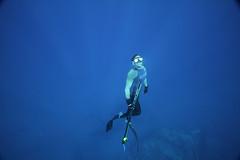 Garrett about to surface (Aaron Lynton) Tags: canon hawaii underwater breath diving maui freediving 7d spl breathe apnea spear spearfishing freedive