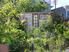 Greenhouse_5605062414_l