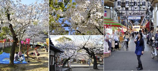 2014大阪賞櫻 自助旅行
