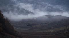 brume dans les vignes (bulbocode909) Tags: valais suisse vignes nature montagnes hiver brume pluie
