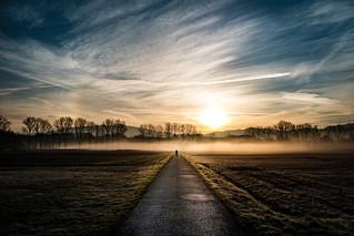 Morning Fog - Color Version