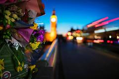 2017 03 22 14.40 (Tedz Duran) Tags: tedzduran london england uk blue twilight bridge westminster big ben elizabeth tower bus light trail flower flora tribute river thames cityscape night photography nightscape carl zeiss distagon1435