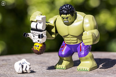 Hulk Trooper Smash (jezbags) Tags: lego legos legostarwars legomarvel marvel star starwars wars canon60d canon 60d 100mm closeup upclose toys toy macro macrophotography macrodreams macrolego stormtrooper stormtroopers troopers trooper smash hulk green white garden nature purple bokeh scared hung upside helmet