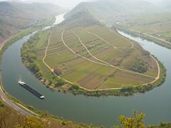 Panoramablick am Calmont (Jörg Paul Kaspari) Tags: eller bremm diecalmonttour calmont wanderung wandertour frühling spring mosel moselschleife
