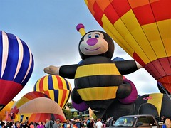 Memorial Park (Jane Lazarz) Tags: janelazarz walkingcolorado coloradosprings colorado balloonfest