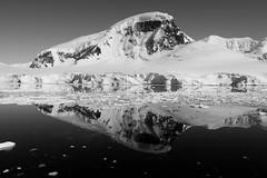 The Monochrome Mirror (Danae Sheehan) Tags: blackandwhite monochrome antarctica landscape view cold snow ice rock black white sky scenic still antarctic peninsula mountains ridges water
