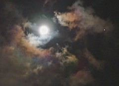 The Pink Moon (IRENE - Welcome to Spring) Tags: thepinkmoon moon moonmadness moonlight moonmoods moons cloud allclouds darkclouds pinkclouds moonamongtheclouds skies allskies evening eveningskies eveningclouds aprilfullmoon fullmoon colourful clouds