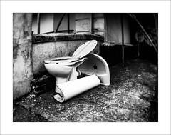 drain'd (Howard Sandford) Tags: forgotten discarded abandoned bathroom basin toilet hfs