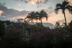 View from Hanalei Bay Resort Hotel (kskyenb) Tags: kauai hanaleibay hanaleibayresort