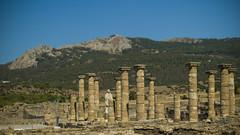 _DSC0423_1 (fatuartetmj) Tags: bolonia ciudad romana cádiz parque natural del estrecho sii yacimiento