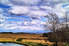 On the way South in Cumbria (Fr Paul Hackett) Tags: landscape water moorland trees cumbria