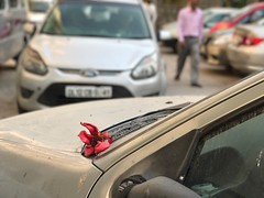 A Car With a Poetic Sort of Red Light (Mayank Austen Soofi) Tags: delhi walla a car with poetic sort red light flower semals eason spring