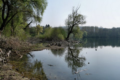 Mein Bruchsaler Hügelland (infactoweb) Tags: weingarten bruchsal moor grötzingen naturschutz wandern infactoweb