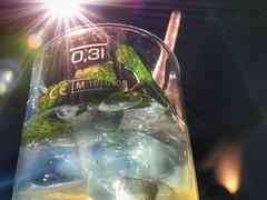 No People Close-up Drink Food And Drink Outdoors Freshness Day Frankfurt #Frankfurtmain #mannheim #berlin #stutgart #musicphotography #münchen #basel #music #bodensee #istanbul #adana #izmir #photographer #foto #bilder #picture #canon #apple #iphone #Niko (opchin) Tags: nopeople closeup drink foodanddrink outdoors freshness day frankfurtfrankfurtmainmannheimberlinstutgartmusicphotographymünchenbaselmusicbodenseeistanbuladanaizmirphotographerfotobilderpicturecanonappleiphonenikonphaseoneteambodenseeswatchsweetcitymetropolsee null modeoftransport love♥ steeringwheel beautyinnature men night city illuminated nature water reflection buildingexterior sky architecture sunset builtstructure