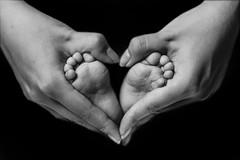 398A8865 (AlexSSC) Tags: baby photography sydney indoor strobist flashlight studio setup