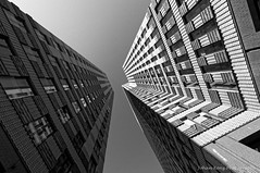 Reaching the Sky (Johan Konz) Tags: symphonytowers financial offices zuidas amsterdam netherlands outdoor bw blackandwhite architecture tower monochrome building symmetry lines geometric sky windows lookup angle diagonal vertical pov modern perspective shapes urban
