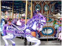 ASTIA Film Simulation - Lansdowne X5191e (Harris Hui (in search of light)) Tags: harrishui fujix10 digitalcompact fuji fujifilm vancouver richmond bc canada vancouverdslrshooter pointshoot lansdowne lansdownecarnival carnival funfair amusementpark carousel horses woodenhorse astia astiafilmsimulation filmsimulation merrygoround