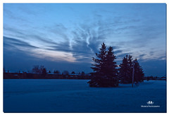 MARCH  2017  -020917-22 (Nick and Karen Munroe) Tags: dawn dusk morninglight munroedesignsphotography munroedesigns munroephotography munroe nikon nickandkarenmunroe nickmunroe nature nikond750 nickandkaren sunrise sun snow trees tree firtree landscape beauty brampton beautiful blue ontario outdoors karenick23 karenick karenandnickmunroe karenmunroe karenandnick canada clouds colour colors color nikon2470f28