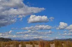 Respirar, pensar y disfrutar / Breathe, think, and enjoy (Carolita✿) Tags: nwn nubes