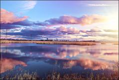 Landscape (-Simulacrum-) Tags: landscape nikon nature outdoor park newjersey nikond5300 sigma creative artistic texture water clouds sky
